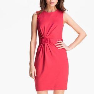 Ted Baker London soft Pink Dress sleeveless